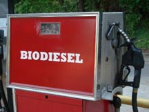 biodiesel for sale